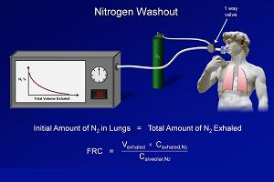 PFT (Lung Capacity)